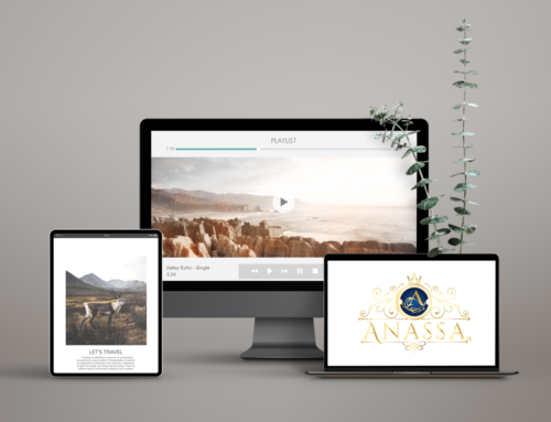 Anassa LLC Case Study